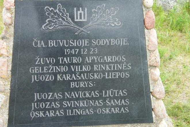 Lietuvos partizanų kautynių ir žūties vieta (Vytautiškės k.)