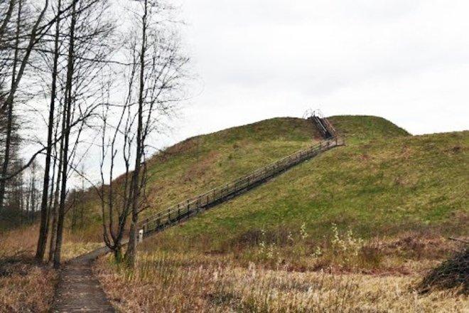 Paveisininkų piliakalnis su gyvenviete