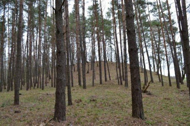 Šlavantų piliakalnis su gyvenviete